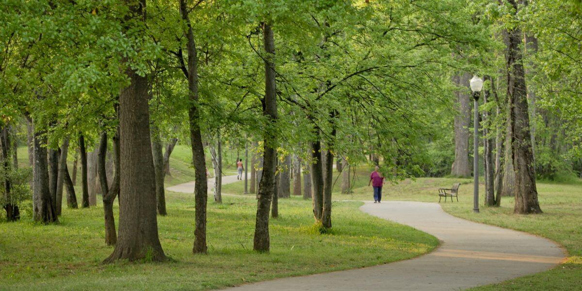 treesontrail